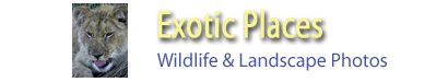 B2ExoticPlaces-link